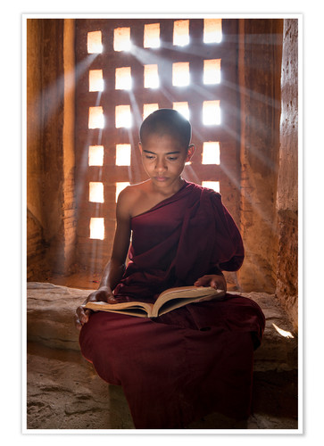 Premium poster Young Burmese monk in meditation at the monastery