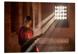 Aluminium print  Buddhist monk in a monastery in Burma - Jan Christopher Becke