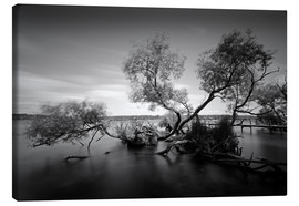 Canvas print  Berlin Wannsee - WildlifePhotography