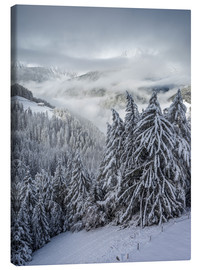 Canvas print  Winter in Valle Aurina (South Tyrol, Italy) - Christian Müringer