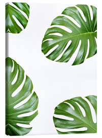 Canvas print  Attack of the Monstera - Finlay and Noa