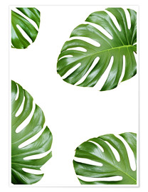 Poster  Attack of the Monstera - Finlay and Noa