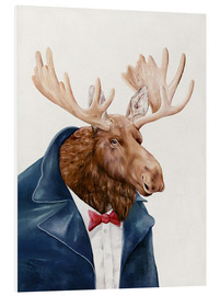 Foam board print  Moose - Animal Crew