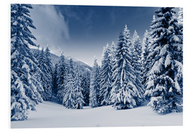 Forex  winter landscape with snow covered trees