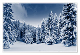 Poster winter landscape with snow covered trees