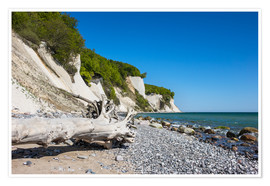 Premium poster Chalk cliffs on the island Ruegen (Germany)
