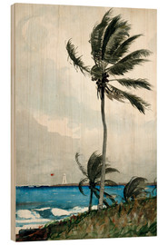 Wood print  Palm Tree, Nassau - Winslow Homer