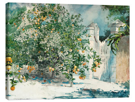 Canvas print  Orange Trees and Gate - Winslow Homer