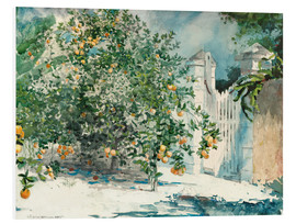 Foam board print  Orange Trees and Gate - Winslow Homer