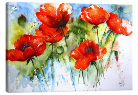 Canvas print  Poppy - Brigitte Dürr