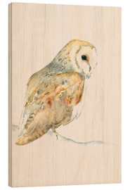 Wood print  Barn Owl - Dearpumpernickel