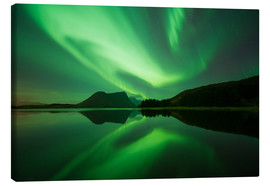 Canvas print  Norway light - Vincent Xeridat