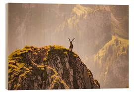 Wood  Capricorn in the Alps - Michael Helmer