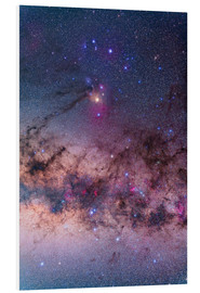 Forex  Scorpius with parts of Lupus and Ara regions of the southern Milky Way. - Alan Dyer