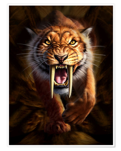 Premium poster Full on view of a Saber-toothed Tiger