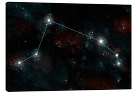 Canvas print  Artist's depiction of the constellation Aries the Ram. - Marc Ward