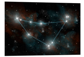 Foam board print  Artist's depiction of the constellation Capricorn the Sea Goat. - Marc Ward