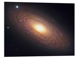 Foam board print  NGC 2841, spiral galaxy in Ursa Major. - Robert Gendler