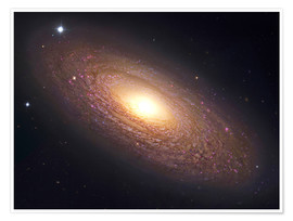 Premium poster  NGC 2841, spiral galaxy in Ursa Major. - Robert Gendler