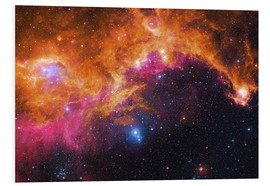 Foam board print  the seagull nebula - Robert Gendler
