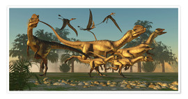 Premium poster A pack of Dilophosaurus dinosaurs hunting for prey.