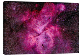 Canvas  The Carina Nebula in the southern sky - Alan Dyer