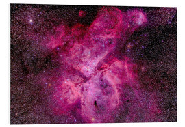 Foam board print  The Carina Nebula in the southern sky - Alan Dyer