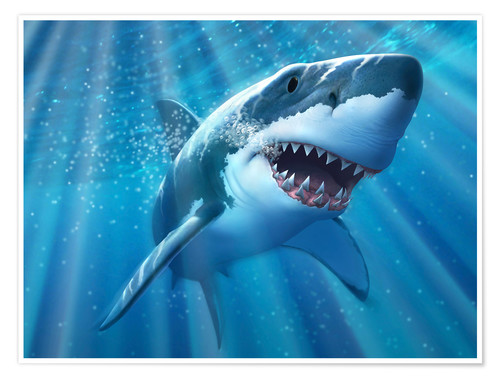 Premium poster A Great White Shark with sunrays just below the surface.