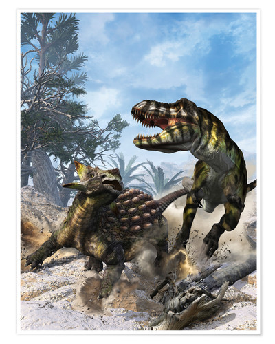 Premium poster Ankylosaurus hits Tyrannosaurus rex with it's clubbed tail in self-defense.