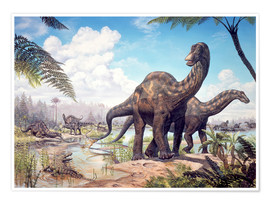 Premium poster  Large Dicraeosaurus sauropods from the Late Cretaceous of Africa.. - Mark Hallett