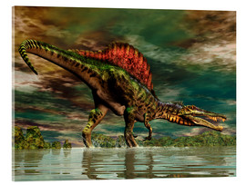 Acrylic print  Spinosaurus from the Cretaceous period - Philip Brownlow