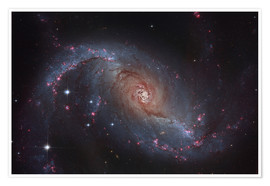 Premium poster  Barred spiral galaxy NGC 1672 in the constellation Dorado. - Roberto Colombari