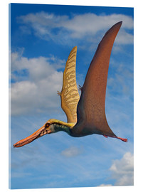 Acrylic print  Cearadactylus atrox, a large pterosaur from the Cretaceous Period. - Sergey Krasovskiy