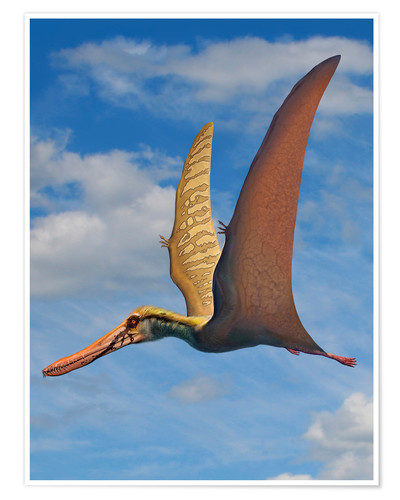 Premium poster Cearadactylus atrox, a large pterosaur from the Cretaceous Period.