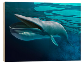 Wood print  Blue whale underwater with caustics on surface. - Leonello Calvetti