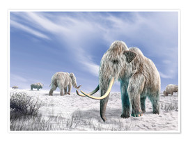 Premium poster  Two Woolly Mammoths in a snow covered field with a few bison. - Leonello Calvetti