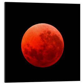 Acrylic print  Lunar eclipse on April 15, 2014 - Michael Miller