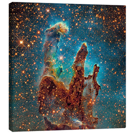Canvas print  Eagle Nebula - Robert Gendler