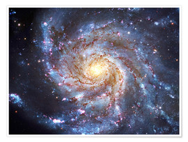Poster  The Pinwheel Galaxy at Ursa Major - Robert Gendler