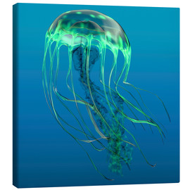 Canvas print  Green jellyfish illustration. - Corey Ford