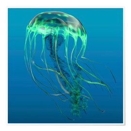 Premium poster  Green jellyfish illustration. - Corey Ford