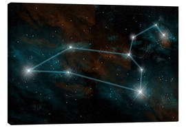 Canvas print  Artist's depiction of the constellation Leo the Lion. - Marc Ward