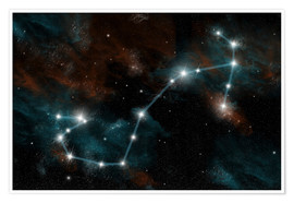 Premium poster  Artist's depiction of the constellation Scorpio the Scorpion. - Marc Ward