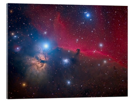 Acrylic print  The Horsehead Nebula and Flame Nebula - Roberto Colombari