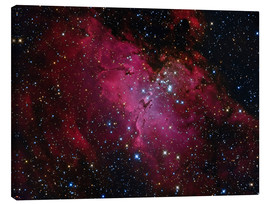 Canvas print  Messier 16, The Eagle Nebula in Serpens. - Roberto Colombari