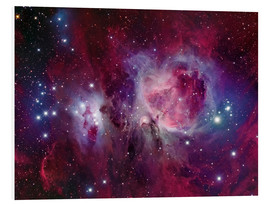 Foam board print  The Orion Nebula with reflection nebula NGC 1977 - Roberto Colombari
