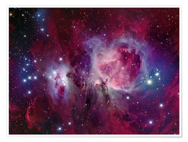 Premium poster  The Orion Nebula with reflection nebula NGC 1977 - Roberto Colombari