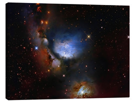 Canvas print  Messier 78, a reflection nebula in the constellation Orion. - Roberto Colombari