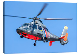 Canvas print  French Navy AS365 Dauphin helicopter - Timm Ziegenthaler