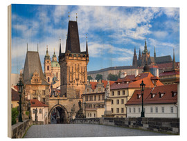 Wood print  Prague Castle and Old Town in summer - Jan Christopher Becke